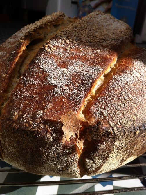 no knead 2